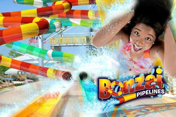d_bonzaipipelines-768x509